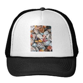 Seashells coloridos gorro