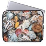 Seashells coloridos mangas computadora