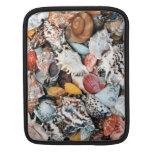 Seashells coloridos mangas de iPad