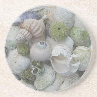 Seashells de Alaska Posavasos Para Bebidas