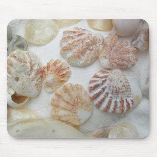 Seashells de la pata del gatito mousepads