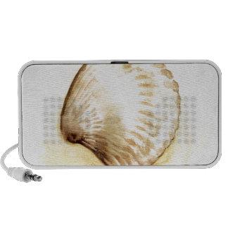 Seashells design with yellow seashell travelling speakers