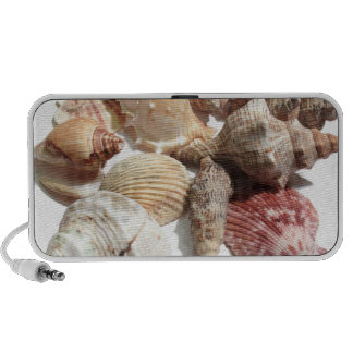 seashells doodle speakers