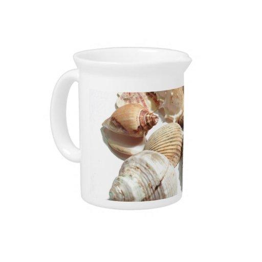 Seashells Drink Pitchers