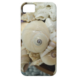¡Seashells elegantes iPhone 5 Case-Mate Carcasas