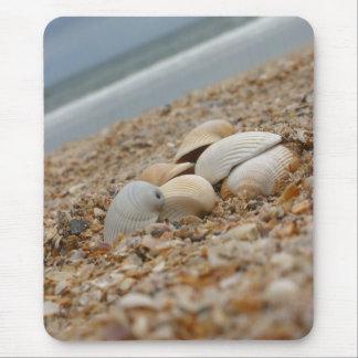 Seashells en el descuento de cantidad del mousepad