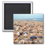 Seashells en el imán de la playa