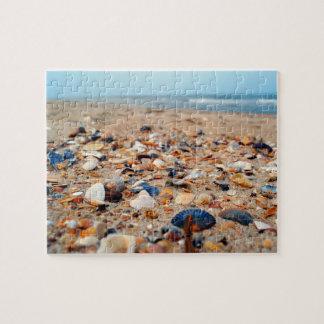 Seashells en el rompecabezas de la playa