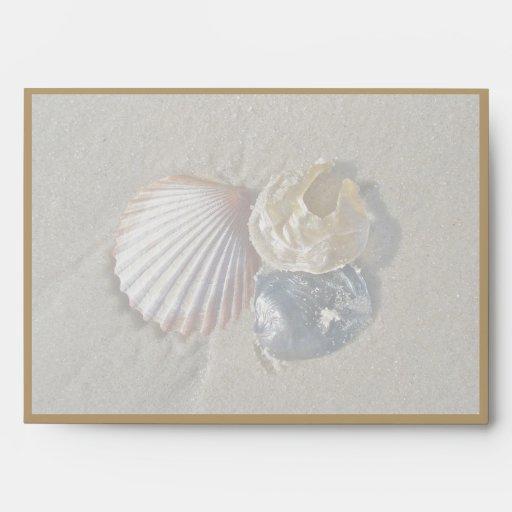 Seashells en el sobre de la playa