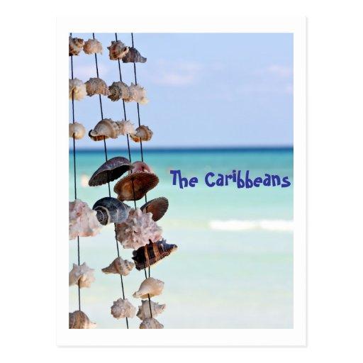 seashells en fondo del mar tarjetas postales