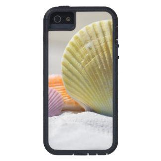 Seashells en la arena blanca funda para iPhone SE/5/5s