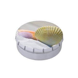 Seashells en la arena blanca latas de dulces
