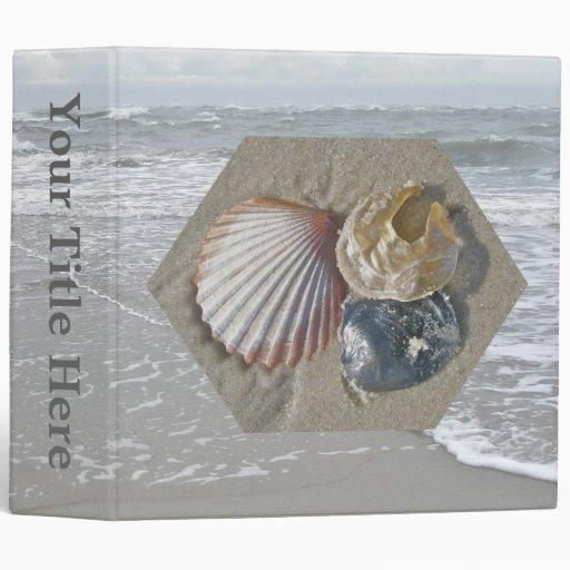 Seashells en la carpeta de la playa
