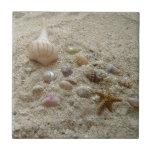 Seashells en la playa tejas  ceramicas