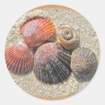 Seashells en los artículos de coordinación de la p etiquetas redondas