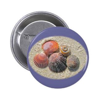 Seashells en los artículos de coordinación de la p pin redondo de 2 pulgadas