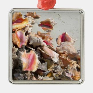 Seashells en los turcos de la playa el | y la foto ornaments para arbol de navidad