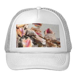 Seashells en los turcos de la playa el | y la foto gorros bordados