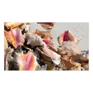 Seashells en los turcos de la playa el   y la foto plantillas de tarjetas de visita