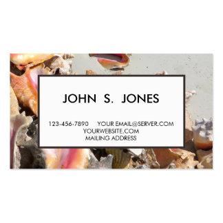 Seashells en los turcos de la playa el   y la foto tarjetas de visita