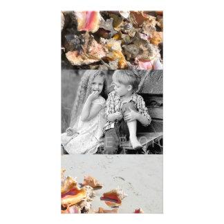 Seashells en los turcos de la playa el | y la foto tarjetas fotograficas