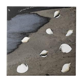 Seashells en una playa azulejo cuadrado pequeño
