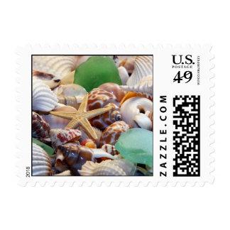 Seashells estrellas de mar y franqueo del vidrio d sellos postales
