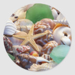 Seashells estrellas de mar y pegatinas del vidrio  etiquetas redondas