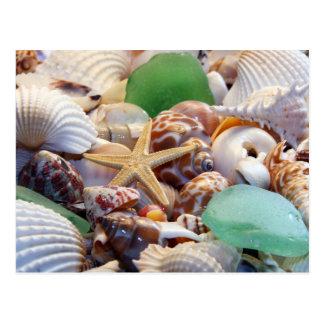 Seashells estrellas de mar y postal del vidrio de