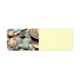 seashells etiquetas de remite