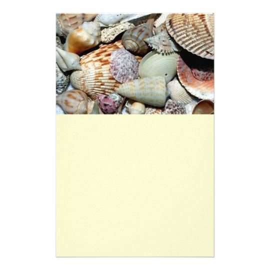 seashells flyer
