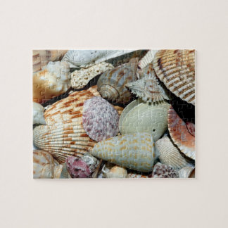 Seashells gathered up from beach Sanibel Island Fl Jigsaw Puzzle