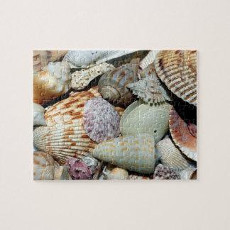 Seashells gathered up from beach Sanibel Island Fl Jigsaw Puzzle