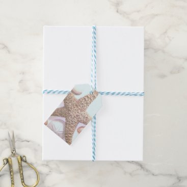 Beach Themed Seashells Gift Tags
