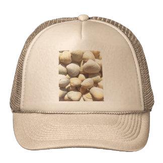 Seashells Gorros Bordados