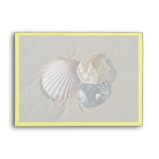 Seashells Happy Birthday Coordinating Items Envelope