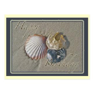 Seashells Happy Birthday Coordinating Items Postcard