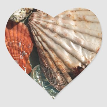 Beach Themed Seashells Heart Sticker