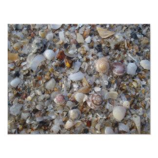 Seashells in Thailand Card