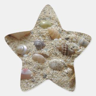 Seashells In The Sand Star Sticker