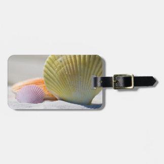 Seashells in White Sand Luggage Tag