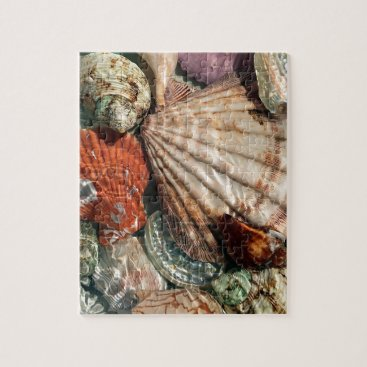 Beach Themed Seashells Jigsaw Puzzle