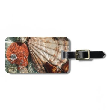 Beach Themed Seashells Luggage Tag