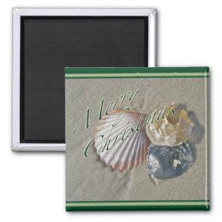 Seashells Merry Christmas Series Magnet