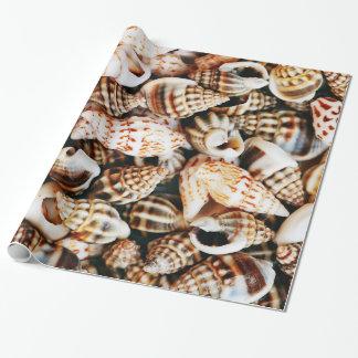 Seashells minúsculos papel de regalo