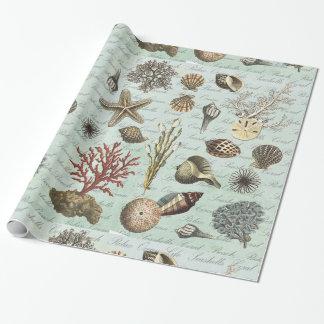 Seashells modernos del vintage papel de regalo