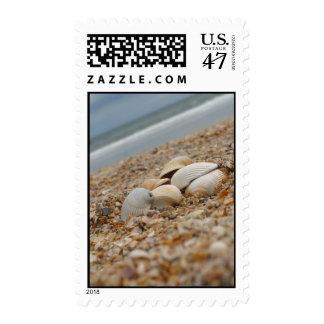 Seashells on beach custom postage stamps bulk