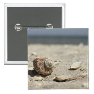 Seashells On Sand By The Sea Button