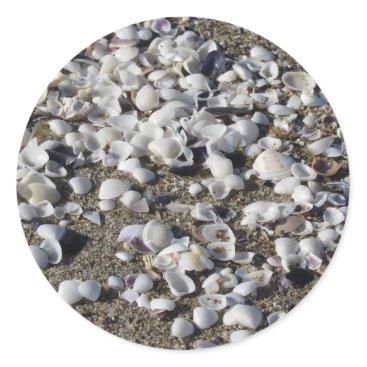 Beach Themed Seashells on sand. Summer beach background Classic Round Sticker