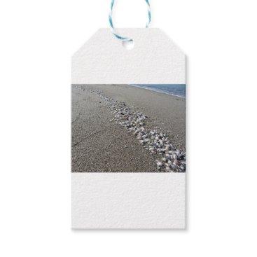 Beach Themed Seashells on sand. Summer beach background Gift Tags
